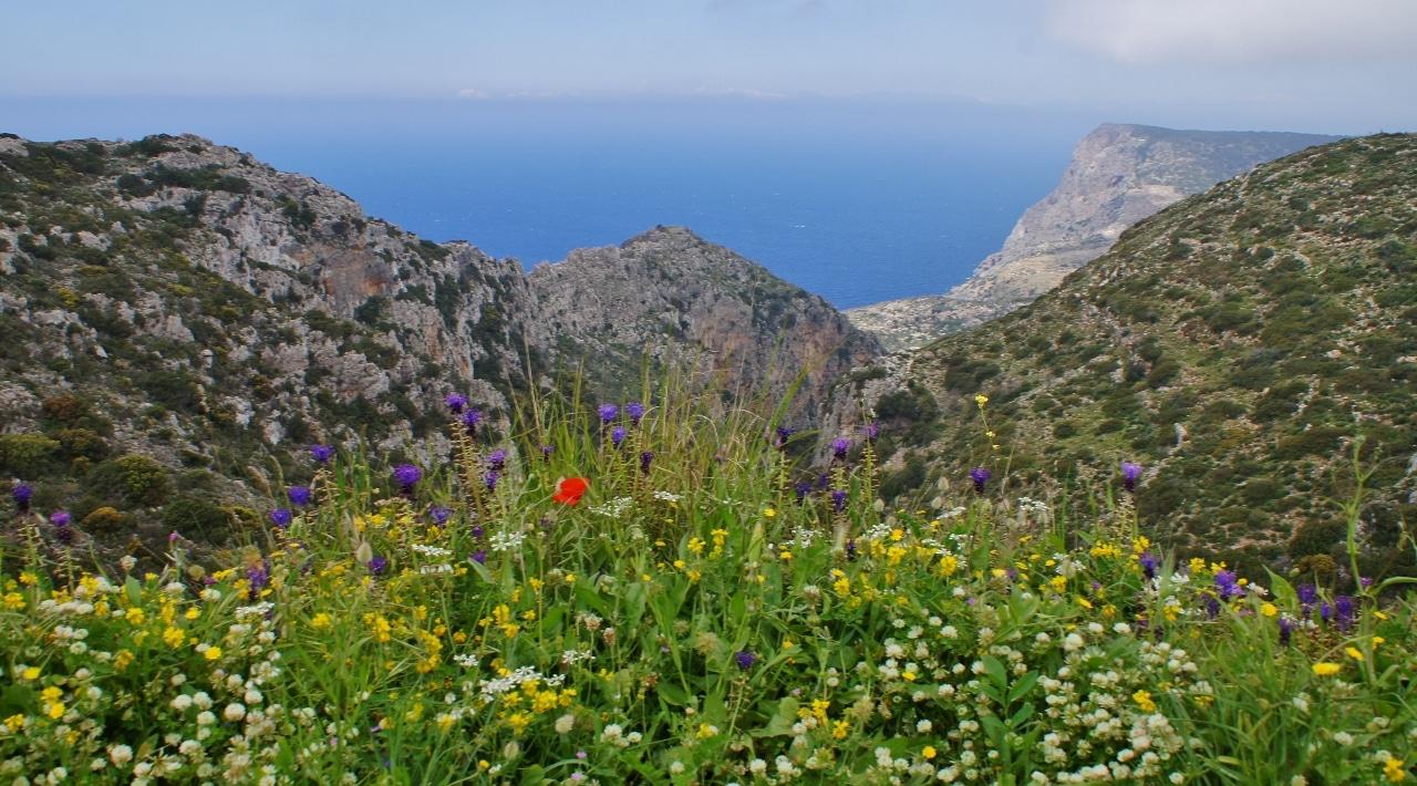 The island Kythera - Wild nature