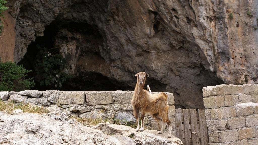 Caves on Kythera by Xenonas Fos ke Choros (10)