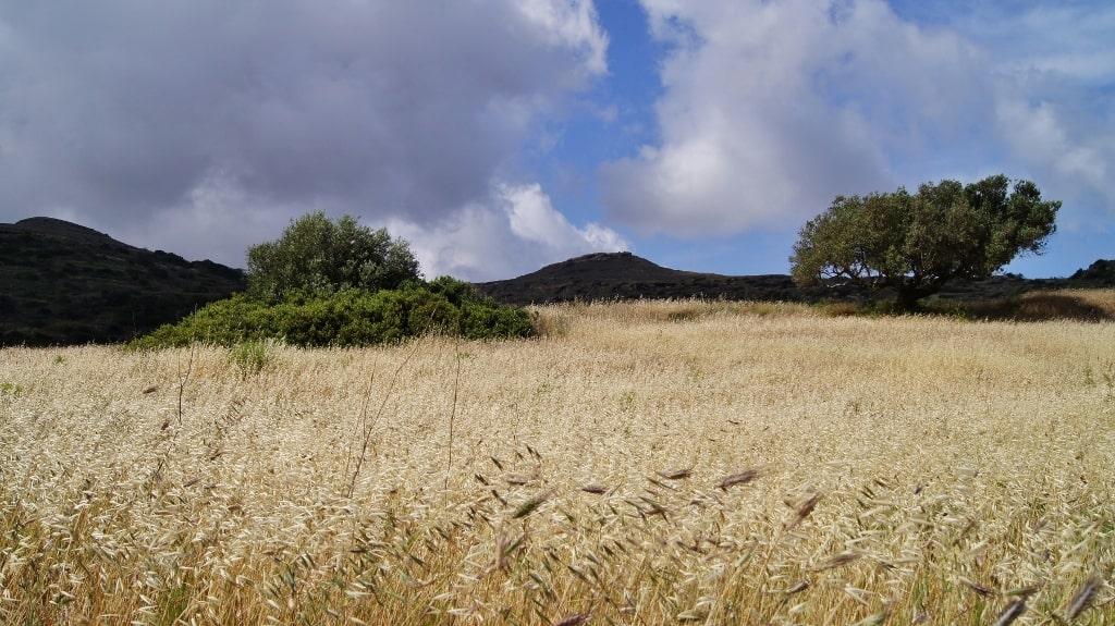 Nature of Kythera by Xenonas Fos ke Choros (1)