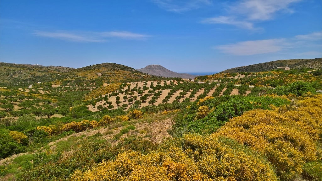 Nature of Kythera by Xenonas Fos ke Choros (11)
