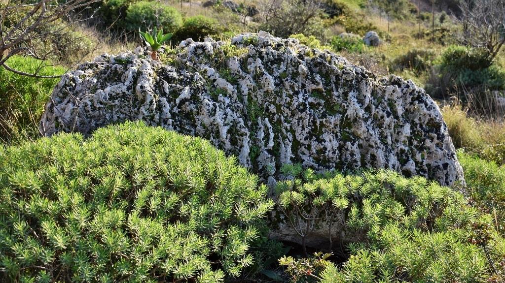 Nature of Kythera by Xenonas Fos ke Choros (6)