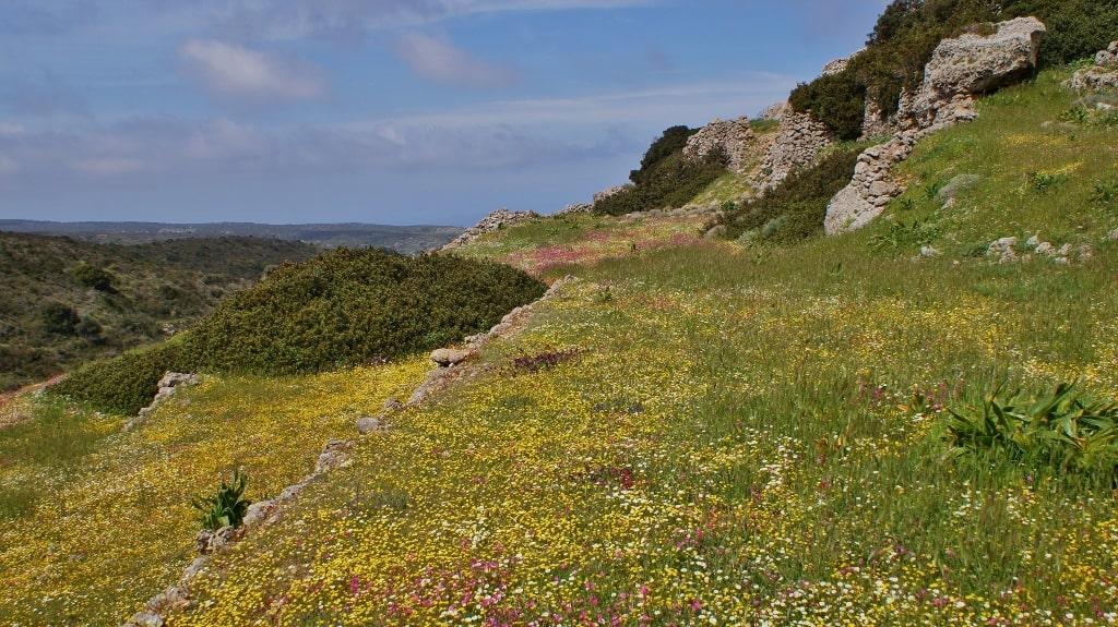 Nature of Kythera by Xenonas Fos ke Choros (7)