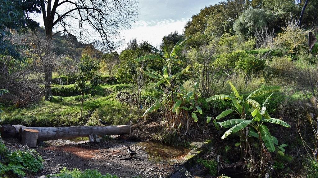 Springs of Karavas on Kythera by Xenonas Fos ke Choros (2)